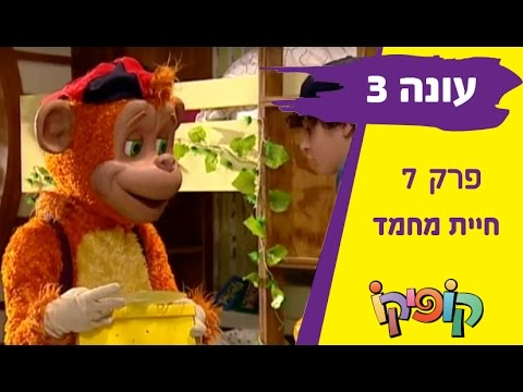 קופיקו עונה 3 פרק 7   חיית מחמד