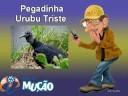 Mucao.com.br - Pegadinha - Urubu Triste
