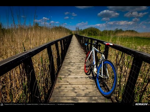 VIDEOCLIP Tura cu bicicleta SSP prin Padurea Comana [VIDEO]