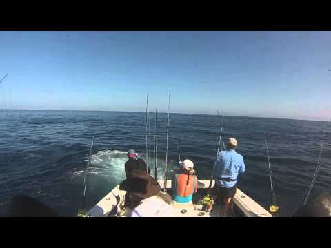 C.R Carrillo Nice day Fishing WetAss II Sportfishing Mark Released Sailfish
