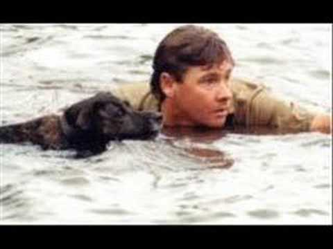 Steve Irwin  Crocodile hunter(Miss you Mate) tribute song