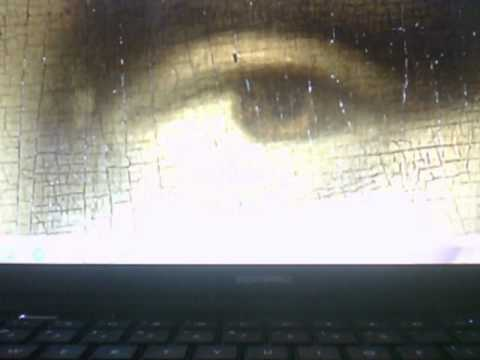 Monalisa Left Eye Encrypted By Leonardo Davinci