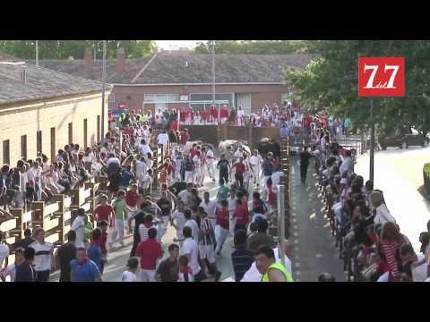 Encierro Tudela 2012 by sietedelsiete