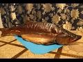 Копчение рыбы, горбуша горячего копчения