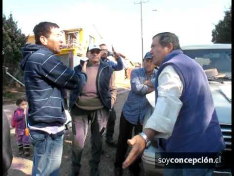 La tala de un árbol generó un conflicto entre los vecinos de Talcahuano