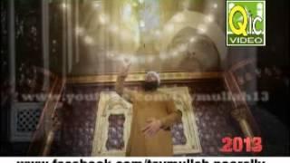 Sarkaar Jaantey Hai - Sajid Qadri Special Track 2013 ( Super Hit In Mauritius ) No Ziker