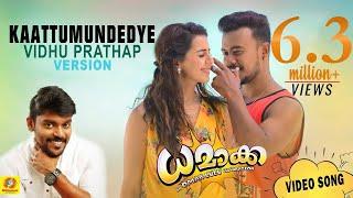 Dhamaka  Love Song  Kaattumundedye  Omar Lulu  Gopi Sundar  Vidhu Prathap