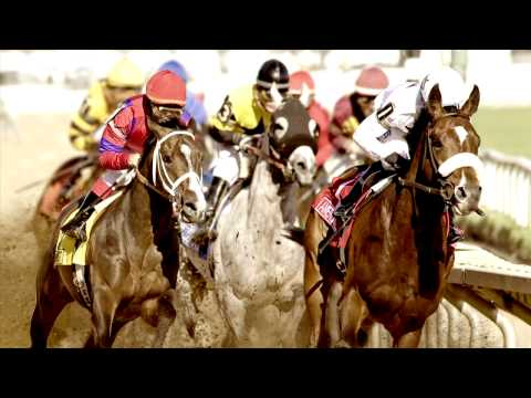 Thumbnail image for '2013 Illinois Derby on WGN'