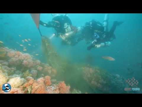 Los Angeles Underwater Explorers: Cleanup the Caissons and the