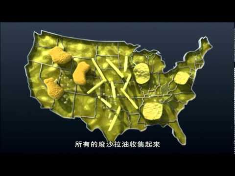 生質柴油來源 食物回收油 Source of Biodiesel : Recycled Cooking Oil