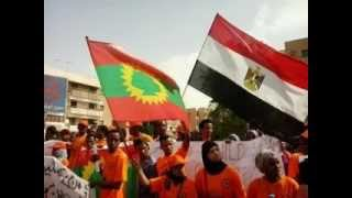 VOA: Oromo protest against mistreatment in Egypt