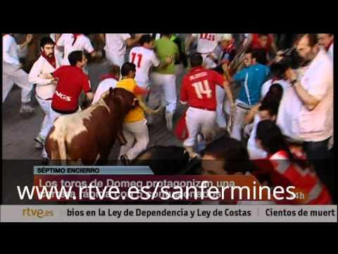 San Fermín 2012: séptimo encierro, ganadería Domecq