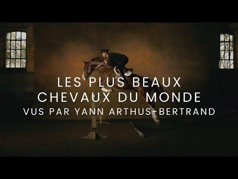 """Film """"Les plus beaux chevaux du monde"""" vus par Yann Arthus Bertrand"""