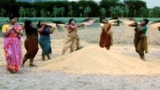 Panta Chenu Paala Kanki Navvindi -Padaharella Vayasu