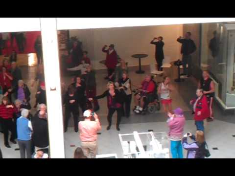 Senior Citizen Flash Mob - Vancouver Mall (Washington)
