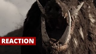 BOAR (2016) Official Trailer Reaction and Review