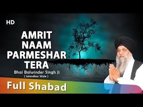 Amrit Naam Parmeshar Tera - Gurbani Shabad Kirtans Compilation