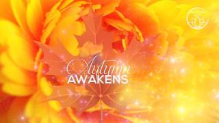 Autumn Awakens - 30 minutes to fight Sun deficit and Autumnal Depression