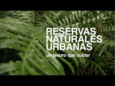 RESERVAS NATURALES URBANAS VALDIVIA - un tesoro a proteger