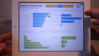 Mobile Analytic Dashboards Demonstration