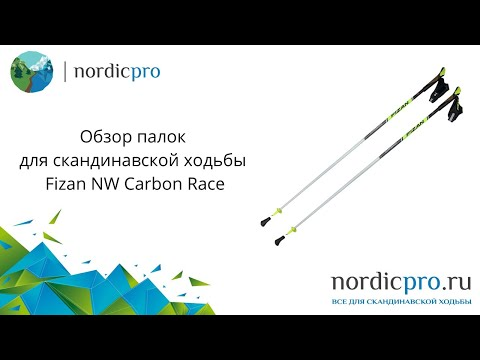 Fizan NW Carbon Race / Палки для скандинавской ходьбы