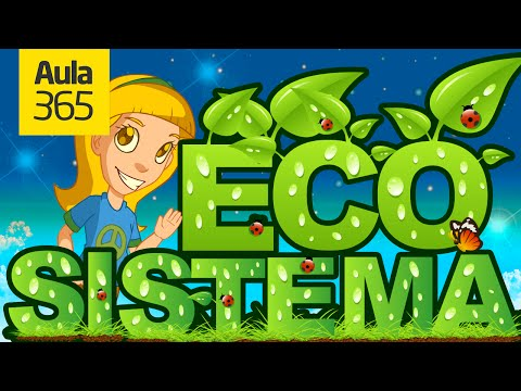 ¿Cómo es un ecosistema? Aula365 te lo cuenta