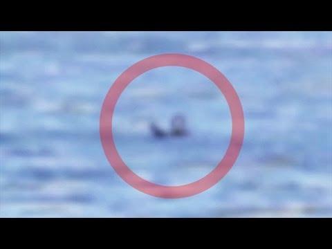 Mermaids Real Videos Real Mermaids