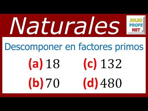 Descomposición de números en factores primos