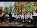 """""""Hristos se naște, slăviți-L!"""" la Caransebeș"""