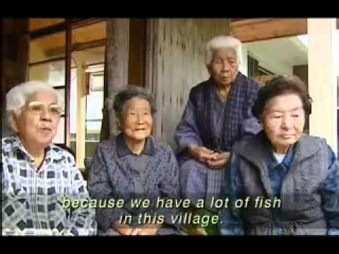 Okinawan Longevity and Health