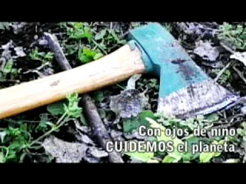 Salvemos a Pinocho Spot Contra la Deforestacion VERSION FINAL