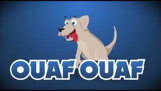 Le Poussin Piou – Pulcino Pio