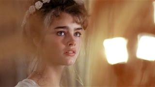 Endless Love - Trailer (HD) (1981)