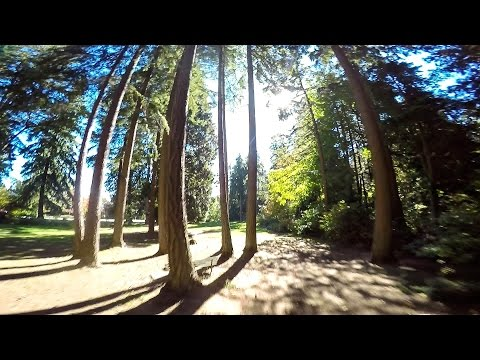 Staying Focused - FPV FREESTYLE - DRONE RACING - LRC RACER - UC7gB_Nbj6RSPZTvTeNOk5jg