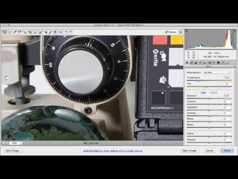 Lumix GH3 and Canon 5D Mk2: ISO noise comparison