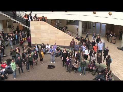 Carlson School of Management Flash Mob, Deck the Halls