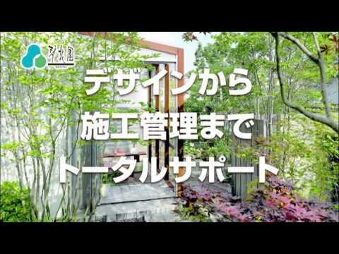 琴花園 / テレビCM