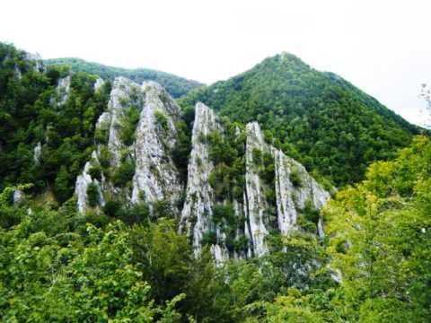 Parque Natural de Redes por TeresalaLoba