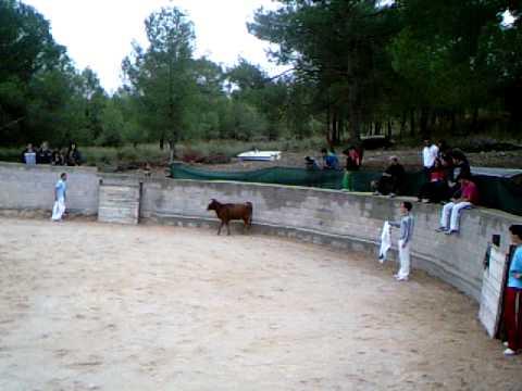 concurso recortadores jovenes promesas 2º vaca