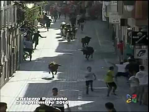 ENCIERRO PEQUEÑO Día 2 de septiembre 2014