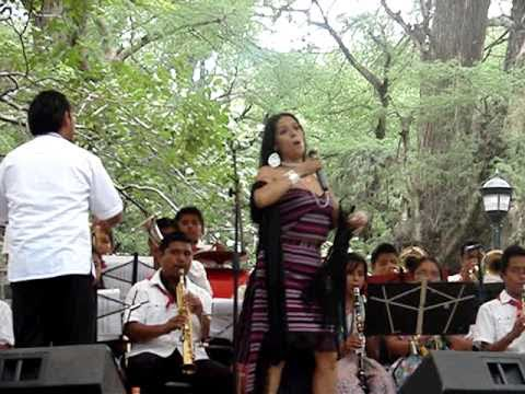 LILA DOWNS (CANCION MIXTECA)