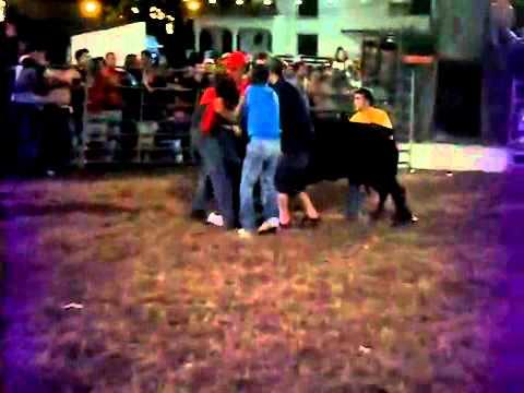 """Melhores Momentos da Garraiada em Aires """"Palmela"""" 2010 2ª Parte"""