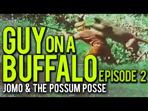 Guy On A Buffalo - Episode 2 (Orphans, Cougars & What Not)
