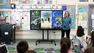Introducing AVer CP Series Interactive Flat Panels