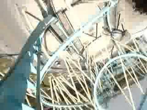 Kraken - Sea world - Roller Coaster