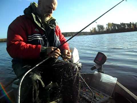погода в питере для рыбака