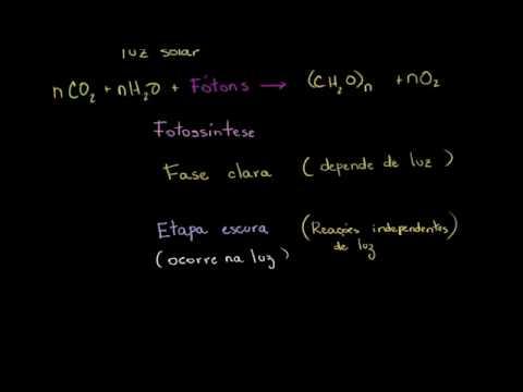 Biologia - Fotossíntese (Khan Academy)