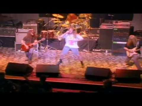 Blind Melon Letters from a porcupine DVD