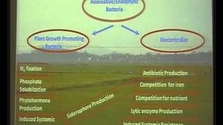 National Conference on Bio Prospecting Part 14