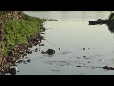 Advirtieron sobre la contaminación de plásticos en el río Paraná